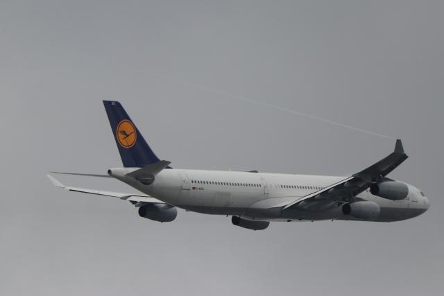 imosaさんが、羽田空港で撮影したルフトハンザドイツ航空 A340-313Xの航空フォト(飛行機 写真・画像)