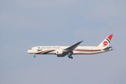 airdrugさんが、成田国際空港で撮影したビーマン・バングラデシュ航空 787-9の航空フォト(飛行機 写真・画像)
