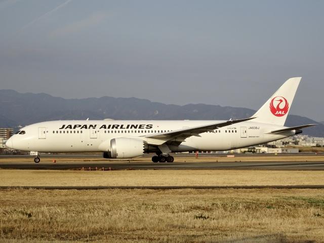 worldstarさんが、伊丹空港で撮影した日本航空 787-8 Dreamlinerの航空フォト(飛行機 写真・画像)