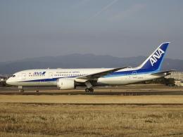 worldstarさんが、伊丹空港で撮影した全日空 787-8 Dreamlinerの航空フォト(飛行機 写真・画像)