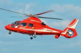 ブルーさんさんが、大阪ヘリポートで撮影した大阪市消防航空隊 AS365N3 Dauphin 2の航空フォト(飛行機 写真・画像)