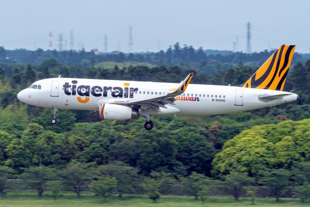 K.Sさんが、成田国際空港で撮影したタイガーエア台湾 A320-232の航空フォト(飛行機 写真・画像)
