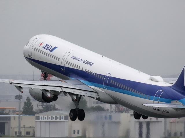 khideさんが、伊丹空港で撮影した全日空 A321-211の航空フォト(飛行機 写真・画像)