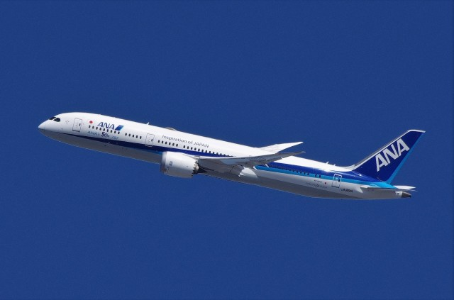 mild lifeさんが、伊丹空港で撮影した全日空 787-9の航空フォト(飛行機 写真・画像)