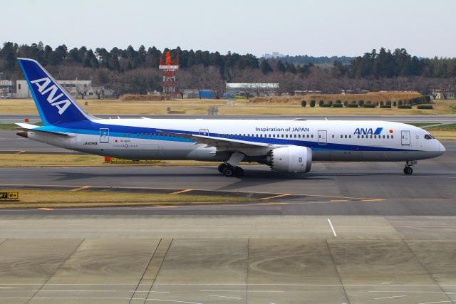 Tomo_mczさんが、成田国際空港で撮影した全日空 787-9の航空フォト(飛行機 写真・画像)
