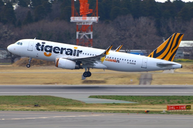 Tomo_mczさんが、成田国際空港で撮影したタイガーエア台湾 A320-232の航空フォト(飛行機 写真・画像)