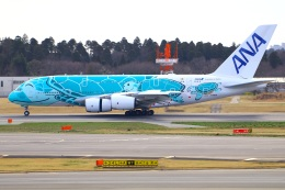 Tomo_mczさんが、成田国際空港で撮影した全日空 A380-841の航空フォト(飛行機 写真・画像)