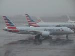 FT51ANさんが、成田国際空港で撮影したアメリカン航空 787-8 Dreamlinerの航空フォト(飛行機 写真・画像)