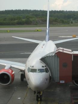 Hiro-hiroさんが、ストックホルム・アーランダ空港で撮影したスカンジナビア航空 737-600の航空フォト(飛行機 写真・画像)