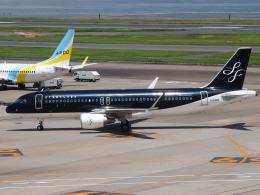 FT51ANさんが、羽田空港で撮影したスターフライヤー A320-214の航空フォト(飛行機 写真・画像)