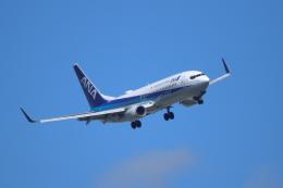 kaz787さんが、伊丹空港で撮影した全日空 737-881の航空フォト(飛行機 写真・画像)