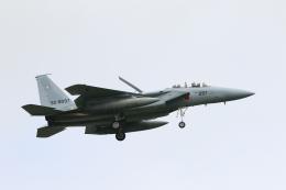 wingace752さんが、三沢飛行場で撮影した航空自衛隊 F-15DJ Eagleの航空フォト(飛行機 写真・画像)