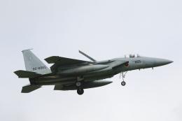 wingace752さんが、三沢飛行場で撮影した航空自衛隊 F-15J Eagleの航空フォト(飛行機 写真・画像)