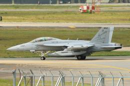 wingace752さんが、三沢飛行場で撮影したアメリカ海軍 EA-18G Growlerの航空フォト(飛行機 写真・画像)