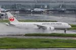 よんろくさんが、羽田空港で撮影した日本航空 787-8 Dreamlinerの航空フォト(飛行機 写真・画像)