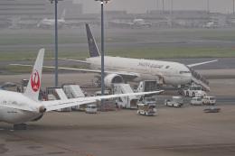 JA1118Dさんが、羽田空港で撮影したサウディア 777-368/ERの航空フォト(飛行機 写真・画像)