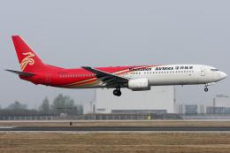 Hariboさんが、北京首都国際空港で撮影した深圳航空 737-97Lの航空フォト(飛行機 写真・画像)