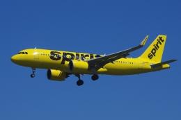 zettaishinさんが、ブラッドレー国際空港で撮影したスピリット航空 A320-271Nの航空フォト(飛行機 写真・画像)