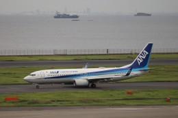 KAZFLYERさんが、羽田空港で撮影した全日空 737-8ALの航空フォト(飛行機 写真・画像)