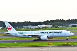 Hiro Satoさんが、成田国際空港で撮影した日本航空 777-246/ERの航空フォト(飛行機 写真・画像)