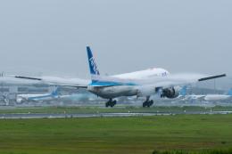 たかしさんが、成田国際空港で撮影した全日空 777-381/ERの航空フォト(飛行機 写真・画像)