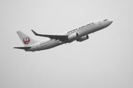 senbaさんが、羽田空港で撮影した日本航空 737-846の航空フォト(飛行機 写真・画像)
