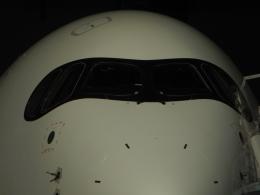 ぶるーすかいさんが、羽田空港で撮影した日本航空 A350-941の航空フォト(飛行機 写真・画像)