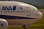 鉄バスさんが、広島空港で撮影した全日空 777-281/ERの航空フォト(飛行機 写真・画像)