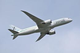 183keihozonkaiさんが、成田国際空港で撮影したZIPAIR 787-8 Dreamlinerの航空フォト(飛行機 写真・画像)
