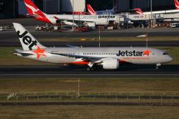 TIA spotterさんが、シドニー国際空港で撮影したジェットスター 787-8 Dreamlinerの航空フォト(飛行機 写真・画像)