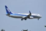 kumagorouさんが、仙台空港で撮影した全日空 737-881の航空フォト(飛行機 写真・画像)