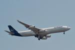 starlightさんが、羽田空港で撮影したルフトハンザドイツ航空 A340-313Xの航空フォト(飛行機 写真・画像)