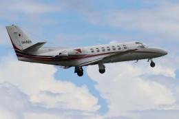 Yuseiさんが、熊本空港で撮影した読売新聞 560 Citation Encore+の航空フォト(飛行機 写真・画像)