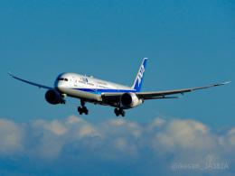 池さん@JA381Aさんが、成田国際空港で撮影した全日空 787-10の航空フォト(飛行機 写真・画像)