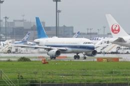 HEATHROWさんが、成田国際空港で撮影したユナイテッド航空 A319-132の航空フォト(飛行機 写真・画像)
