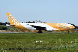 キットカットさんが、成田国際空港で撮影したスクート (〜2017) 777-212/ERの航空フォト(飛行機 写真・画像)