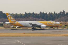 ぱん_くまさんが、成田国際空港で撮影したスクート (〜2017) 777-212/ERの航空フォト(飛行機 写真・画像)