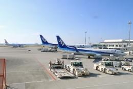 Hiro-hiroさんが、那覇空港で撮影した全日空 737-881の航空フォト(飛行機 写真・画像)