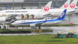 mich_stoneさんが、羽田空港で撮影した全日空 737-8ALの航空フォト(飛行機 写真・画像)