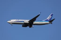 OS52さんが、成田国際空港で撮影した全日空 737-8ALの航空フォト(飛行機 写真・画像)
