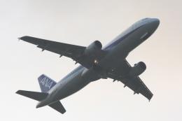 Hiro-hiroさんが、新潟空港で撮影した全日空 A320-211の航空フォト(飛行機 写真・画像)