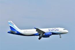Hiro Satoさんが、スワンナプーム国際空港で撮影したインディゴ A320-232の航空フォト(飛行機 写真・画像)