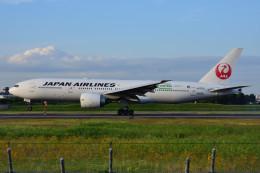 のぎスポさんが、伊丹空港で撮影した日本航空 777-246/ERの航空フォト(飛行機 写真・画像)
