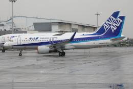 TIA spotterさんが、羽田空港で撮影した全日空 A320-214の航空フォト(飛行機 写真・画像)