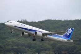 LEVEL789さんが、岡山空港で撮影した全日空 A321-272Nの航空フォト(飛行機 写真・画像)