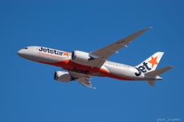 ぱん_くまさんが、成田国際空港で撮影したジェットスター 787-8 Dreamlinerの航空フォト(飛行機 写真・画像)