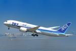 シグナス021さんが、羽田空港で撮影した全日空 787-8 Dreamlinerの航空フォト(飛行機 写真・画像)