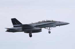 MH-38Rさんが、三沢飛行場で撮影したアメリカ海兵隊 F/A-18D Hornetの航空フォト(飛行機 写真・画像)
