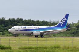 Gripen-YNさんが、能登空港で撮影した全日空 737-781の航空フォト(飛行機 写真・画像)