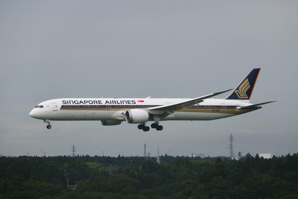 ポン太さんのシンガポール航空 Boeing 787-10 (9V-SCA) 航空フォト